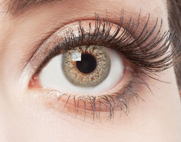 aricona graue nat rliche farbige kontaktlinsen ohne st rke 12 monatskontaktlinse. Black Bedroom Furniture Sets. Home Design Ideas